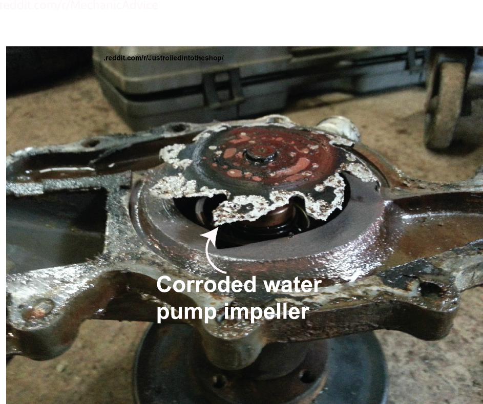 Coolant Flush Cost >> Coolant Flush Should You Replace Coolant Ricks Free Auto Repair