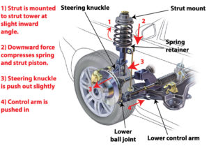 test car struts