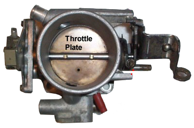 Carbuter throttle plate