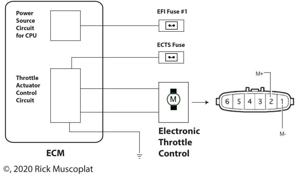 Toyota electronic throttle body wiring diagram
