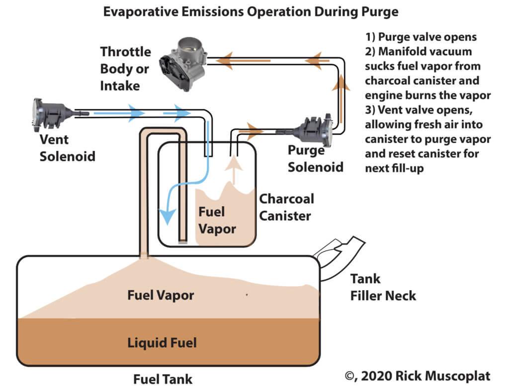 Evap system purge valve